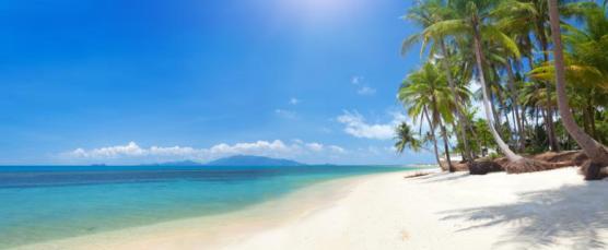 beach-koh-samui_780x322