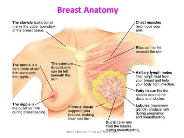 lymphatic-breast-massage-12-638